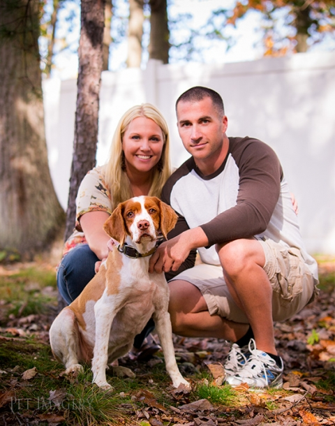 brittany spaniel pet imagery, best pet photographer, new jersey