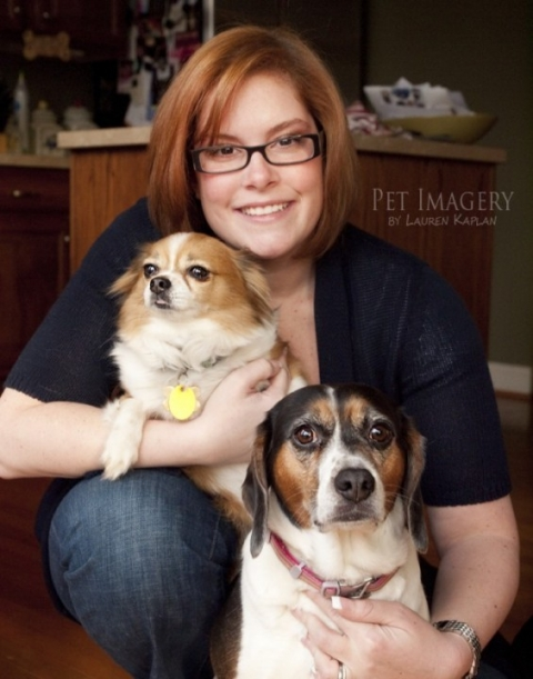 long-haired chihuahua and beagle, Gilbertsville, PA 13