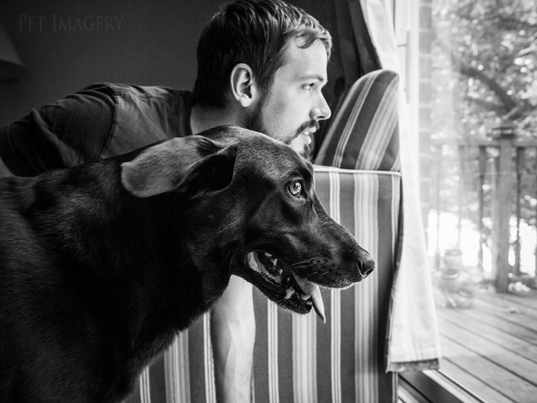 best dog pet photography kaplan