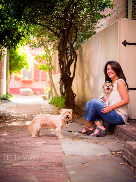 best pet dog photography pa kaplan