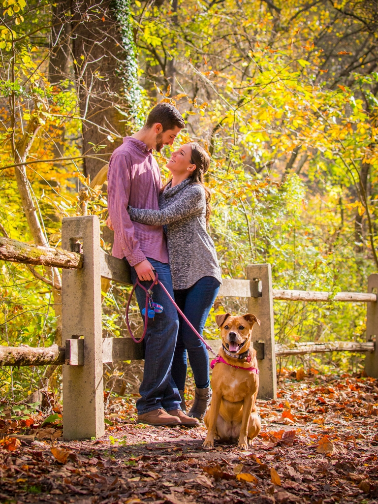 engagement session pets kaplan